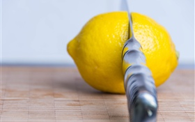 Fruit, lemon, knife HD wallpaper