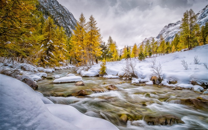 Winter, snow, trees, creek Wallpapers Pictures Photos Images