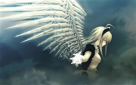 Anime girl, angel, wings, shine HD wallpaper