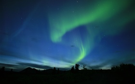Aurora, northern light, night HD wallpaper
