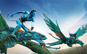 Avatar, flying, sky HD wallpaper