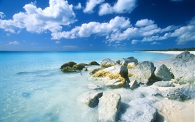 Bahamas, beach, sea, stones HD wallpaper