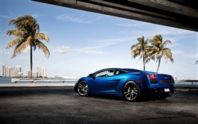 Blue Lamborghini supercar, palm trees