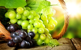 Green and red grapes, sun rays HD wallpaper