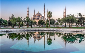 Istanbul, Turkey, mosque, trees, water HD wallpaper