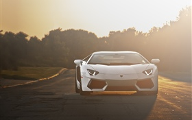 Lamborghini white supercar front view, sunlight HD wallpaper