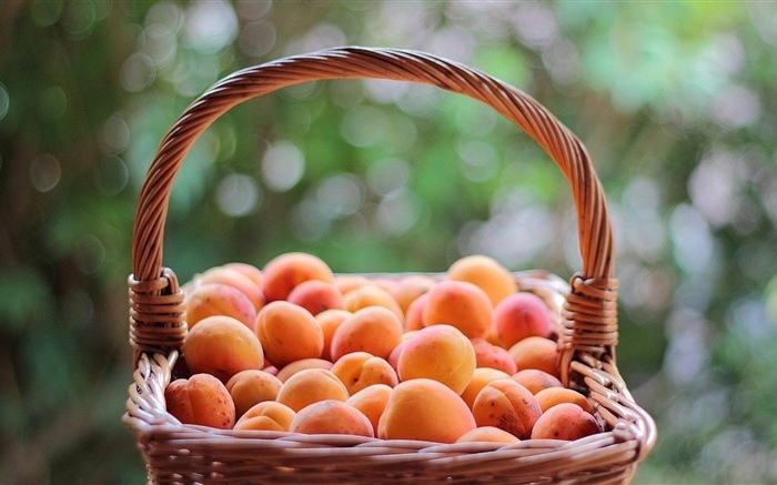 One basket apricots Wallpapers Pictures Photos Images