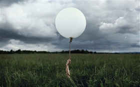 White balloon, grass HD wallpaper
